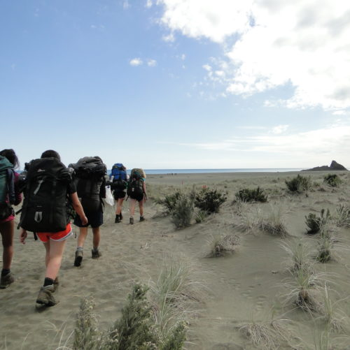 group of trampers make their way across a sand dune towards piha