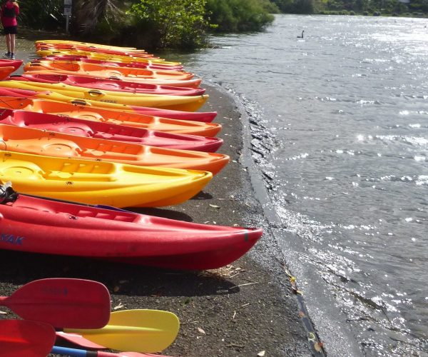 Kayaks lined up on shore ready for Kayaking lesson