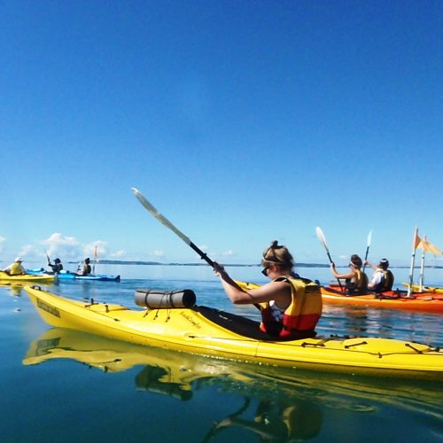 Group of sea kayakers enjoy the pristine calm water